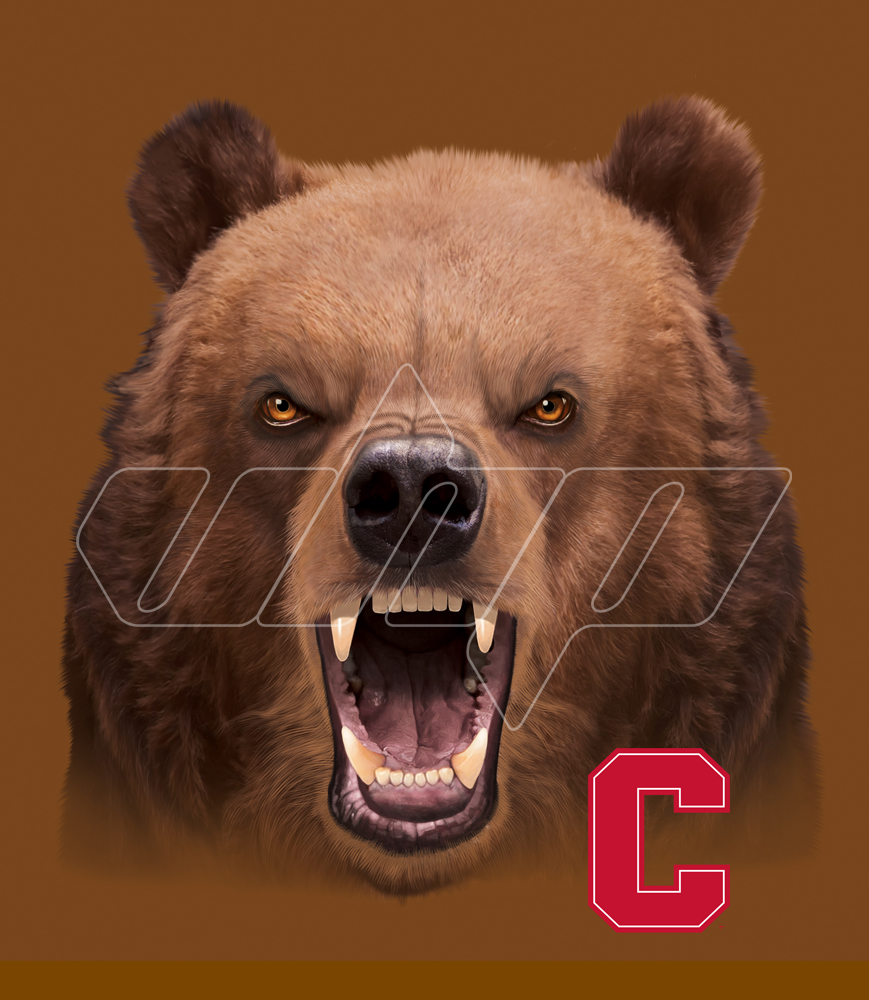 Cornell University brown bear.jpg
