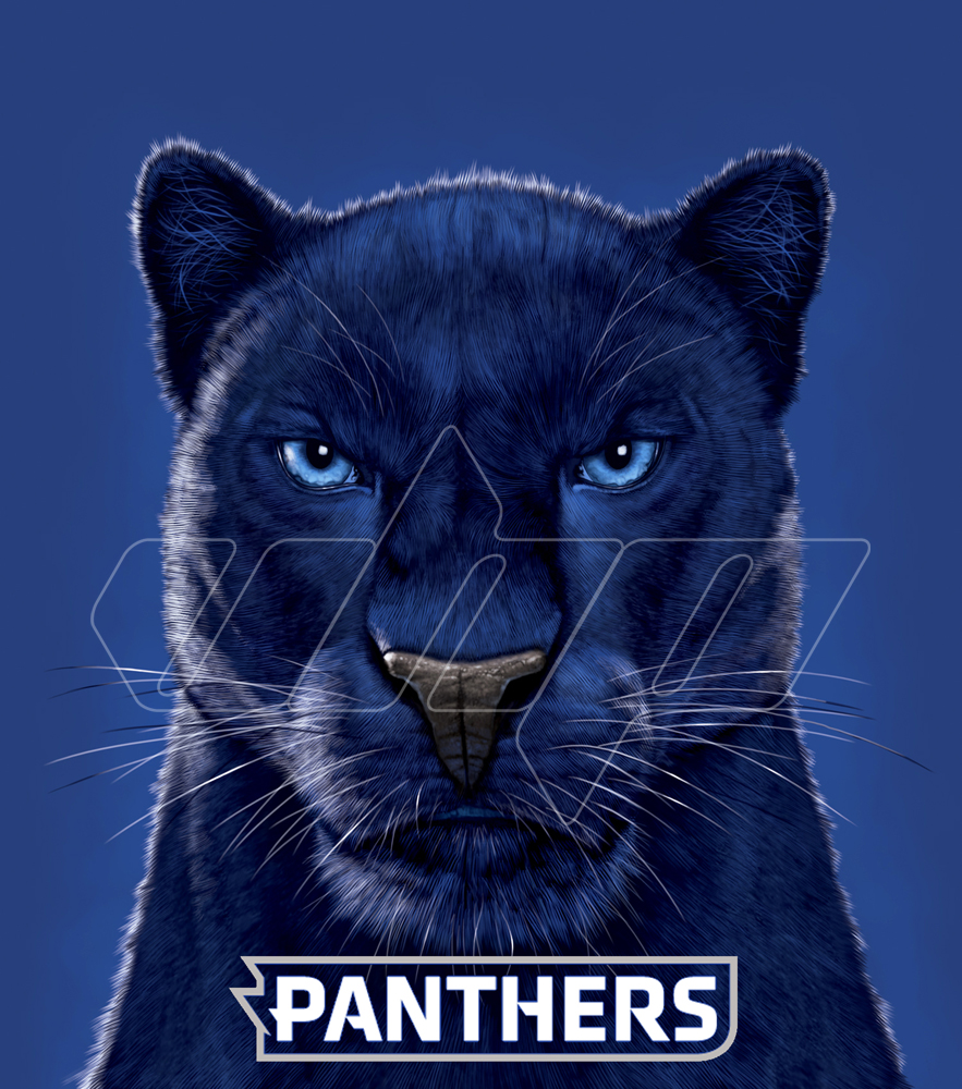 Eastern Illnois Panthers.jpg