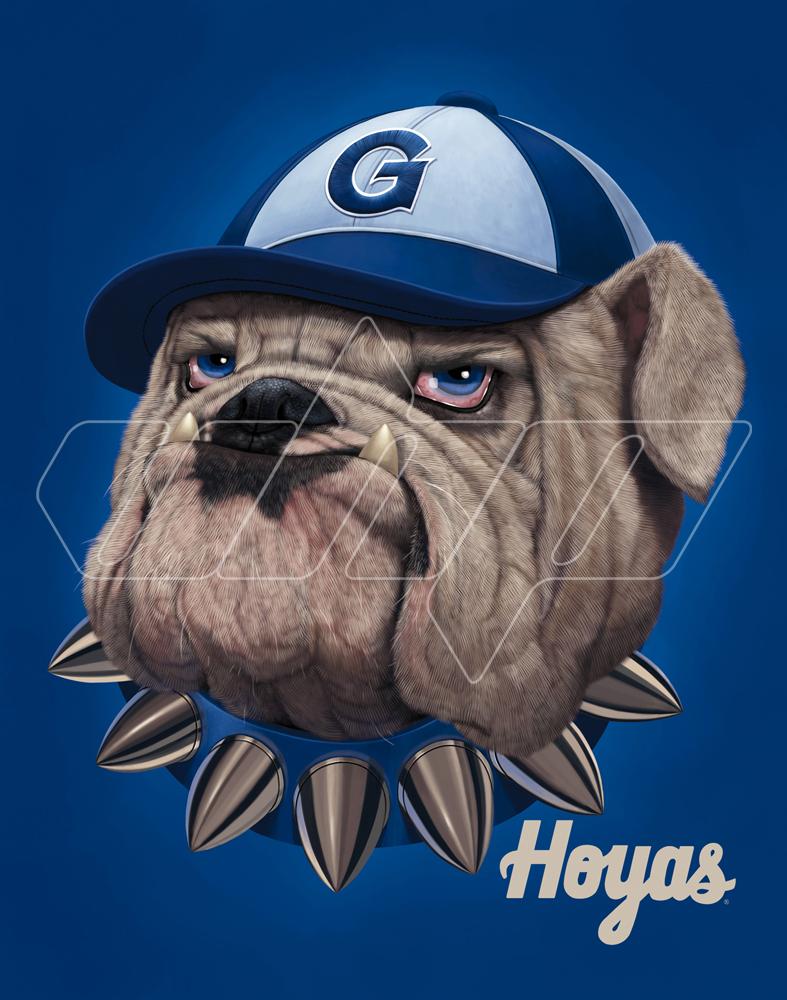 Georgetown University Bulldog.jpg