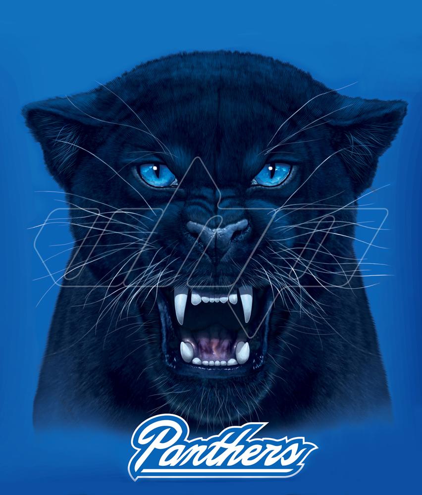 Georgia State Panthers.jpg