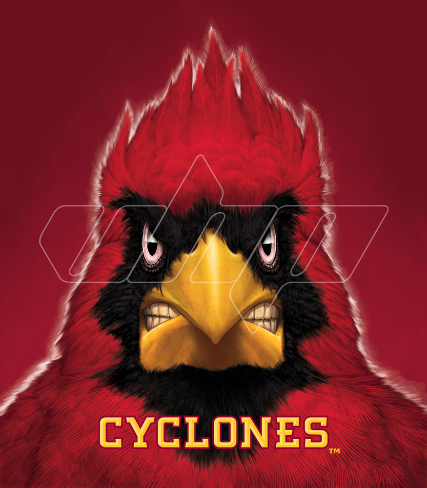 Iowa State Cardinal.jpg