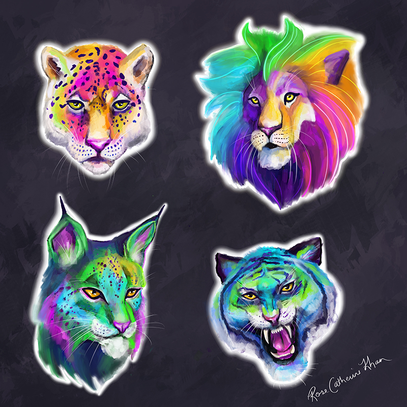 Big Cat Collection