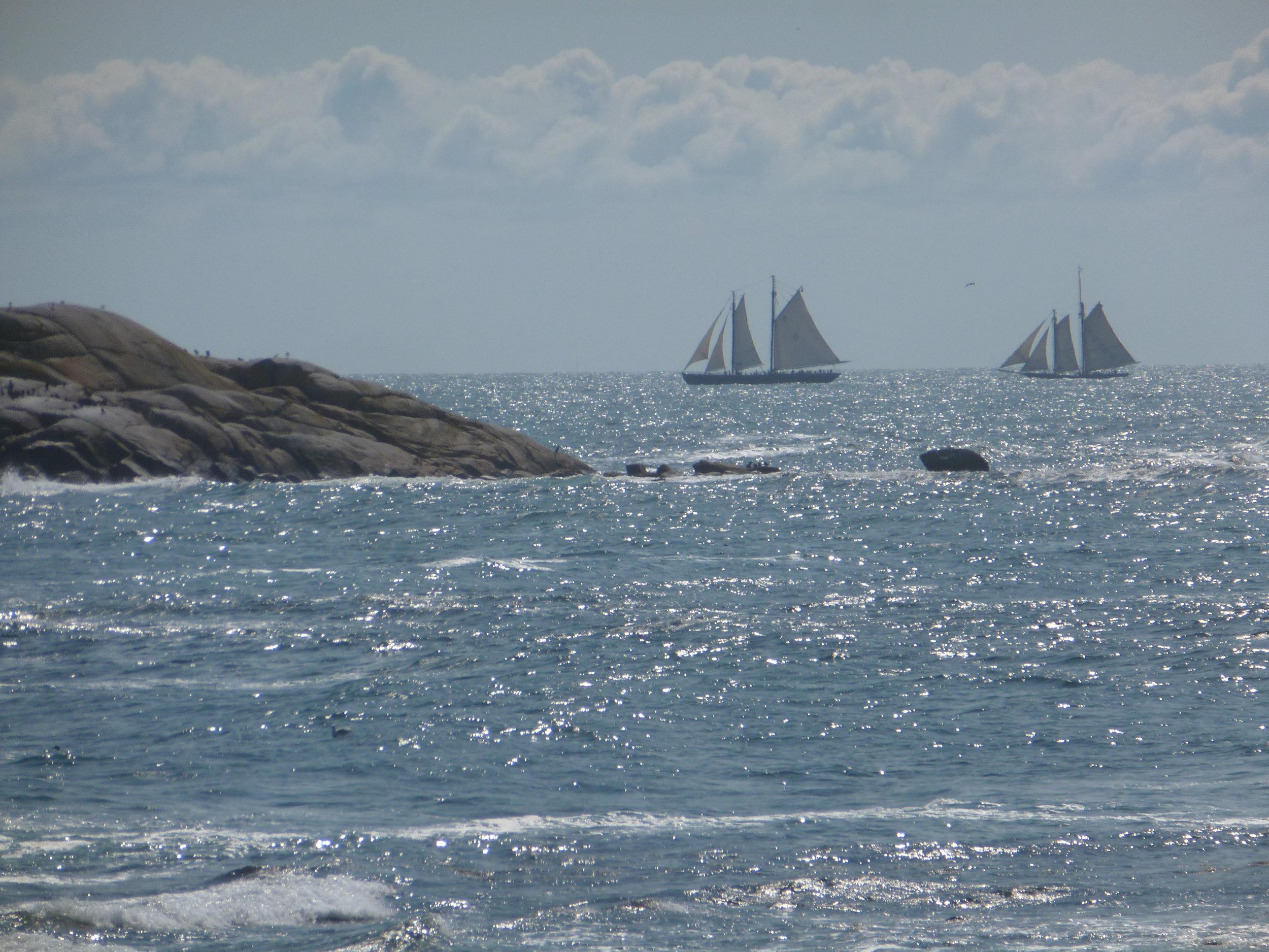 Tall Ships off Gloucester.JPG