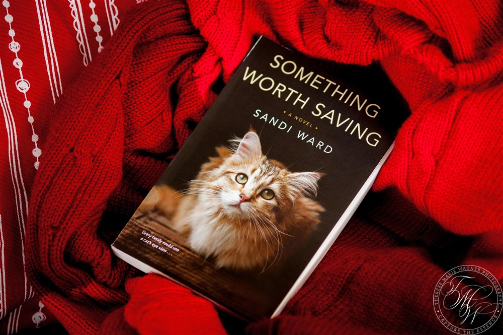 Book updates - Publication date for Something Worth Saving: December 18, 2018.