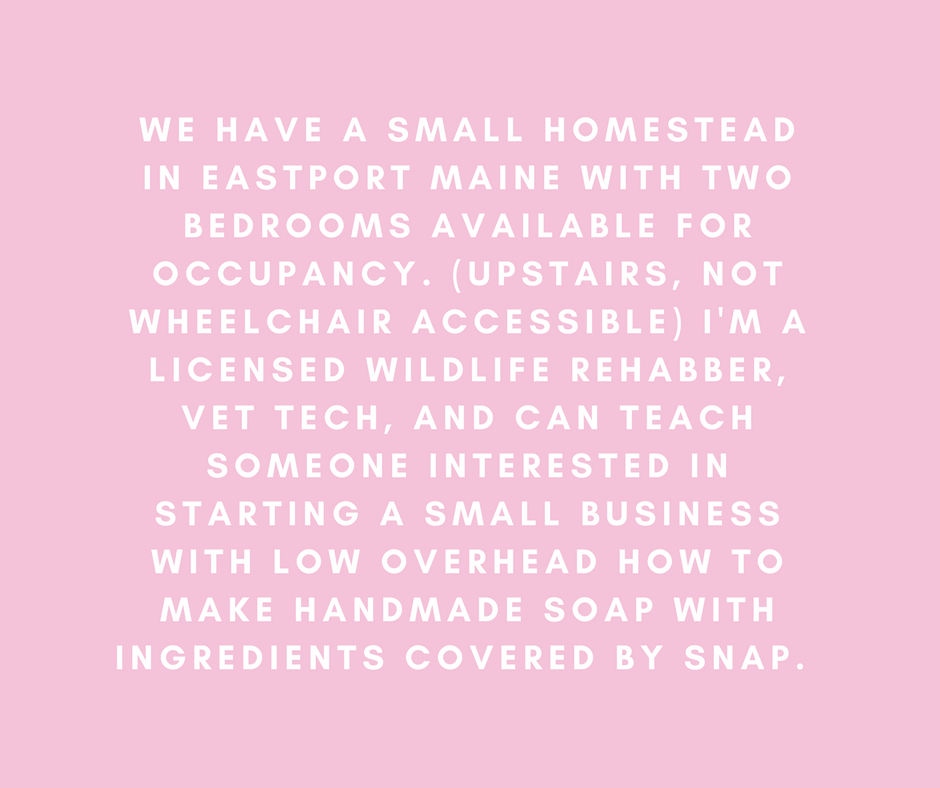 We have a small homestead in Eastport Maine with two bedrooms available for occupancy. (Upstairs, not wheelchair accessible) I'm a licensed wildlife Rehabber, vet tech, and can teach someone interested in starting a small business with low overhead how to make handmade soap with ingredients covered by SNAP.