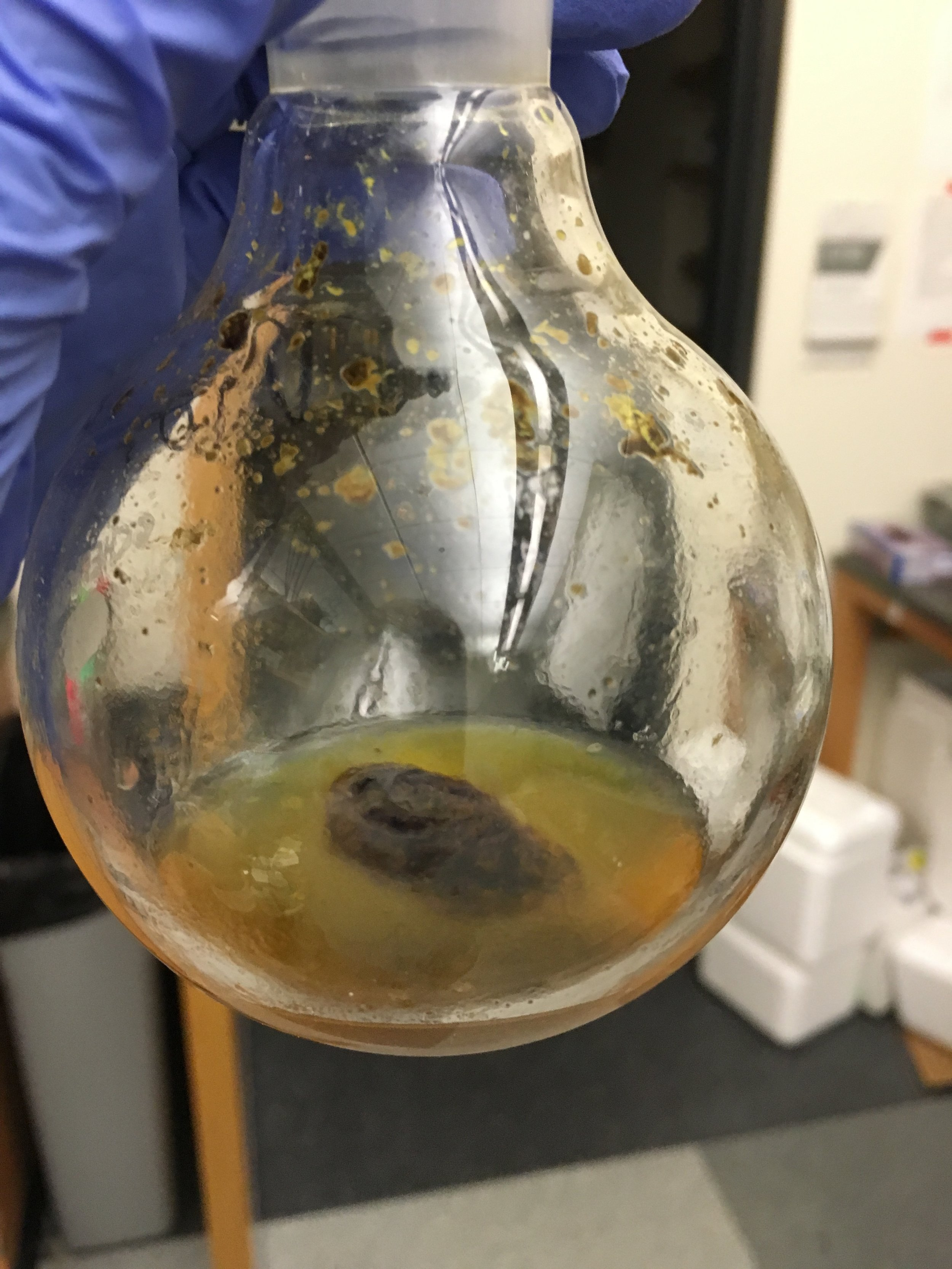 Synthesis can be super gross looking. After a couple weeks of extended washing, this nasty nugget turned out to be the thing I was trying to synthesize.