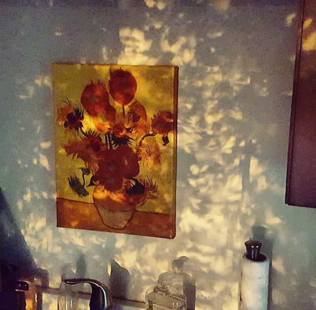 Sunflowers under sunshadows #kitchenviews