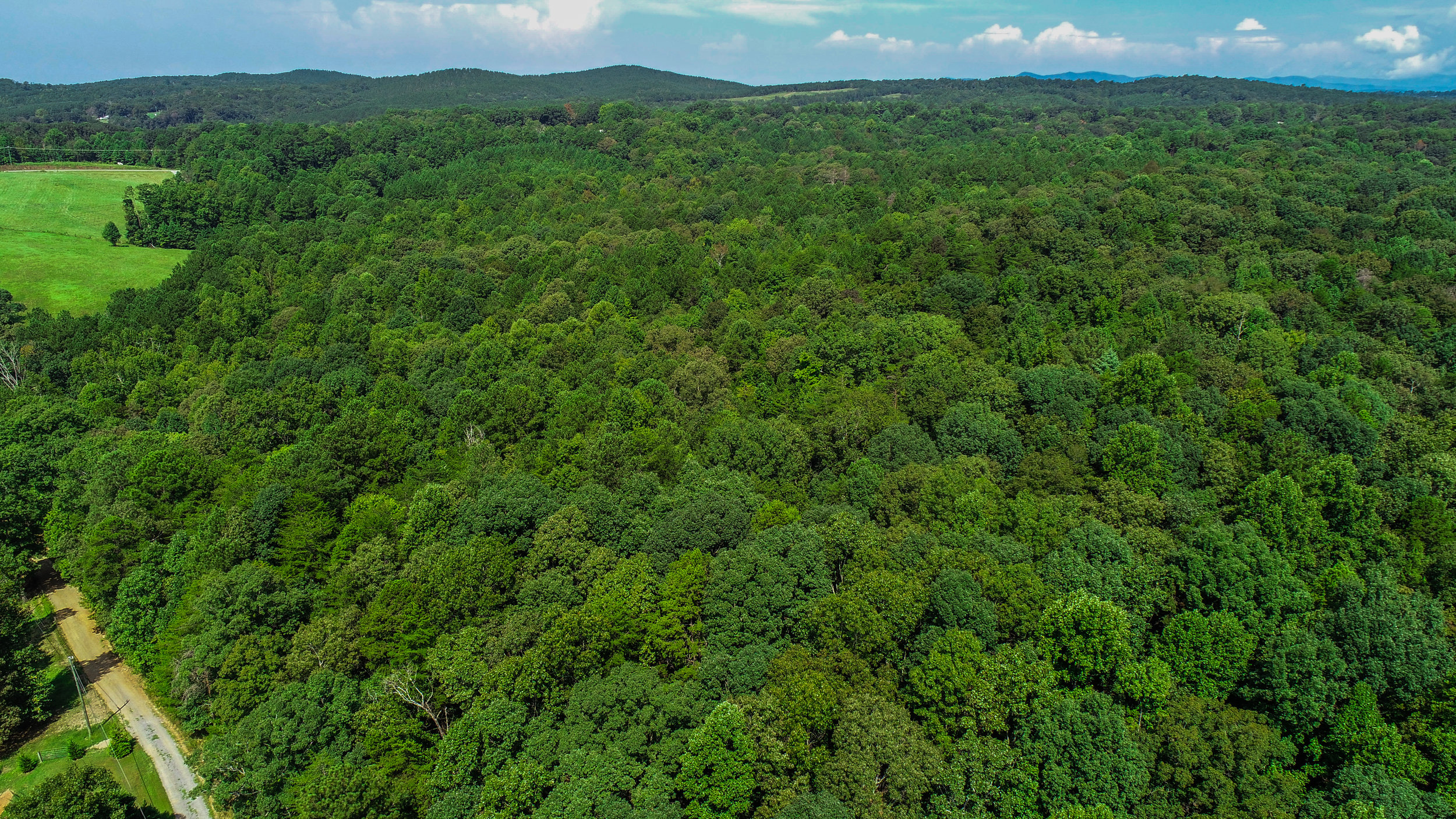 19+ ACRES SOLD - with an ALL CASH OFFER