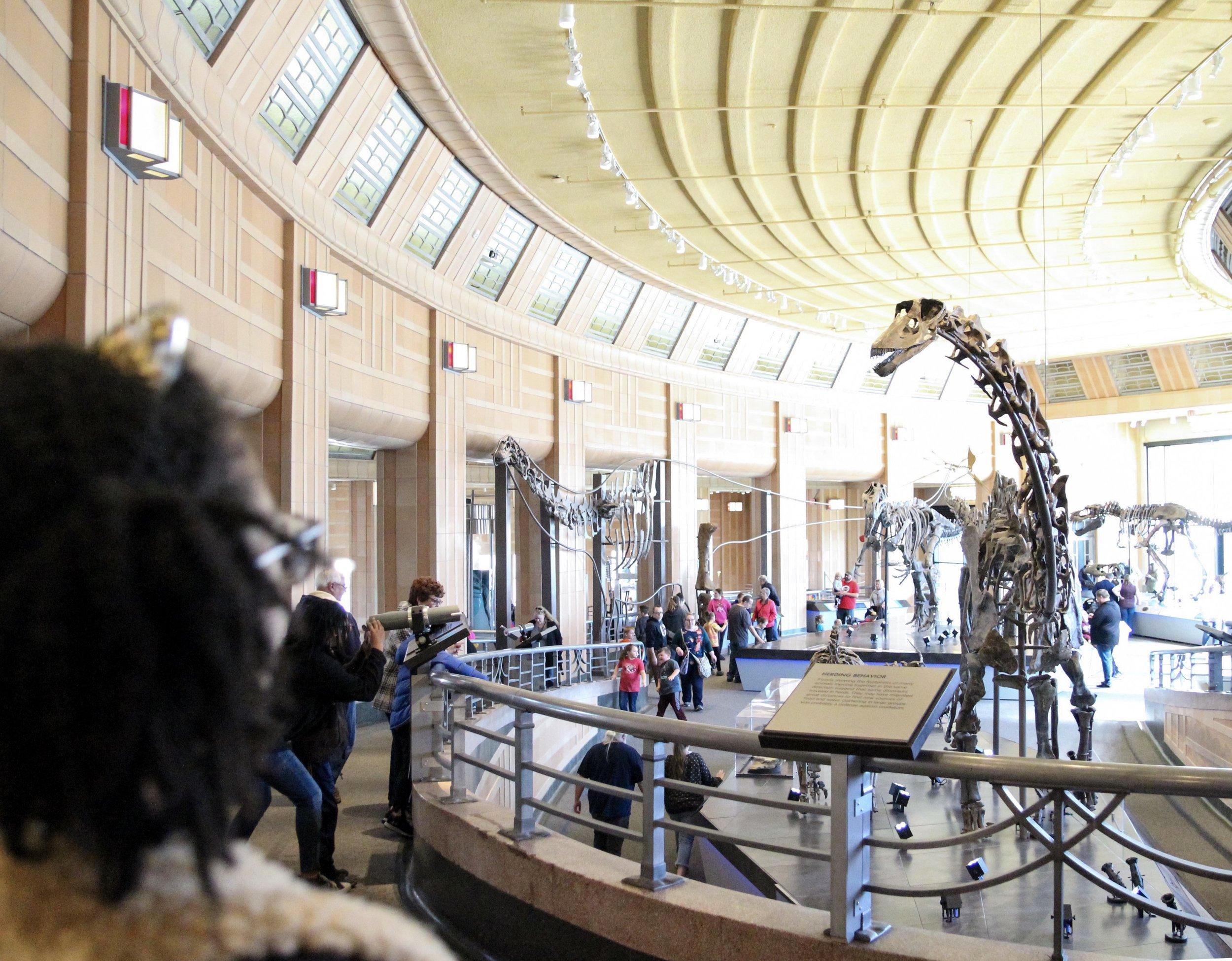 cincinnati museum of natural history and science.jpeg