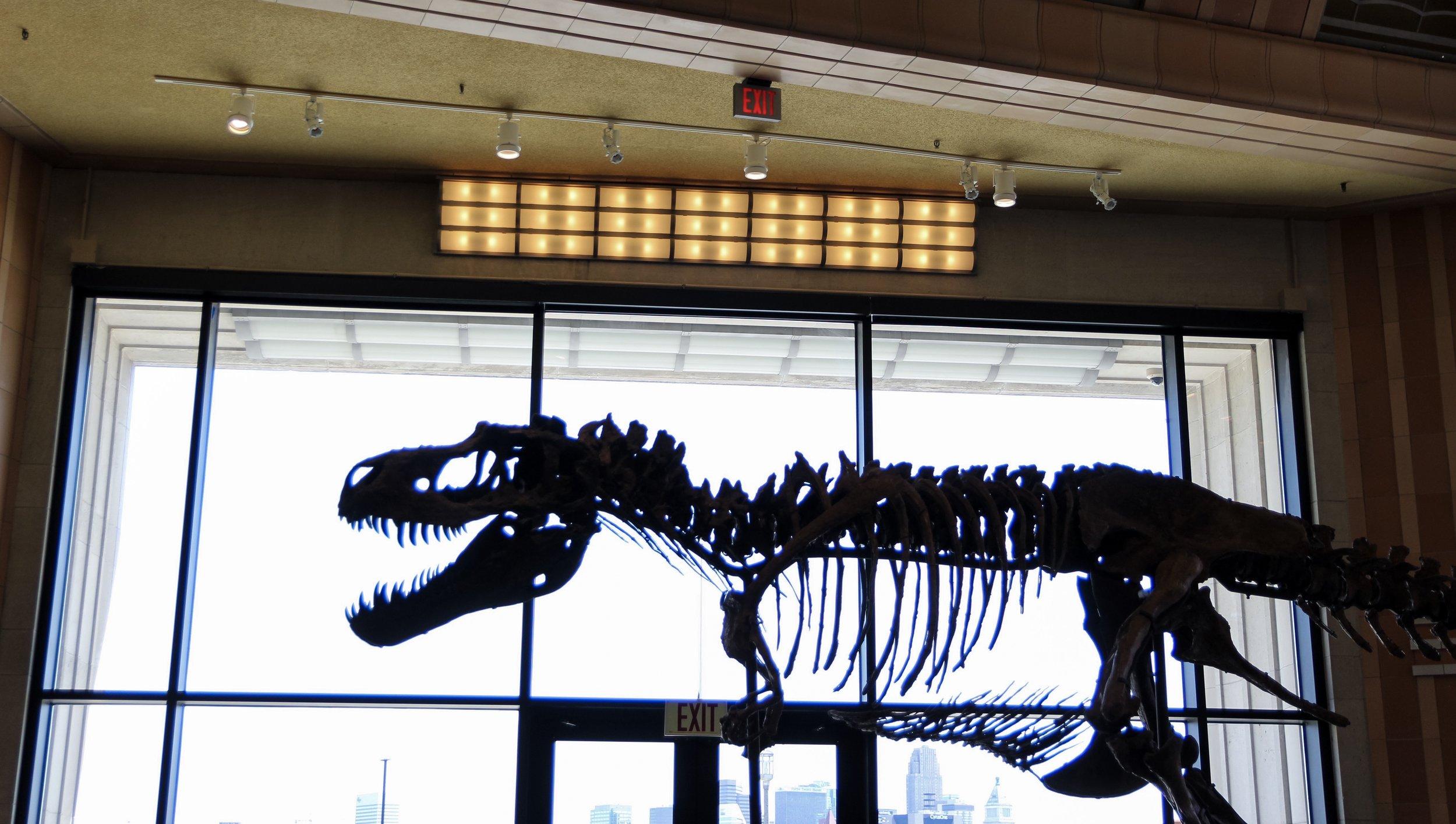 dinosaur cincinnati museum center.jpeg
