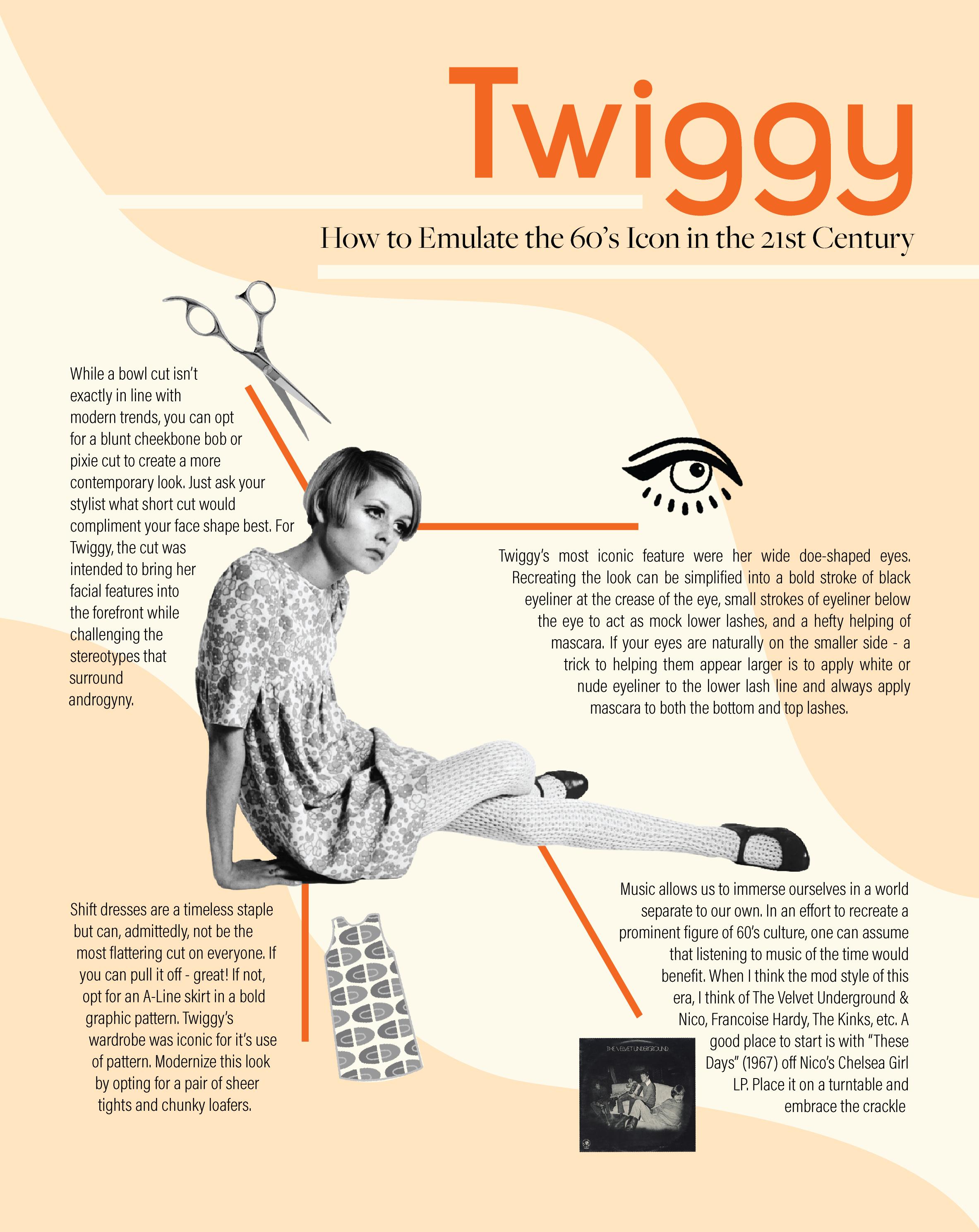 twiggy infographic