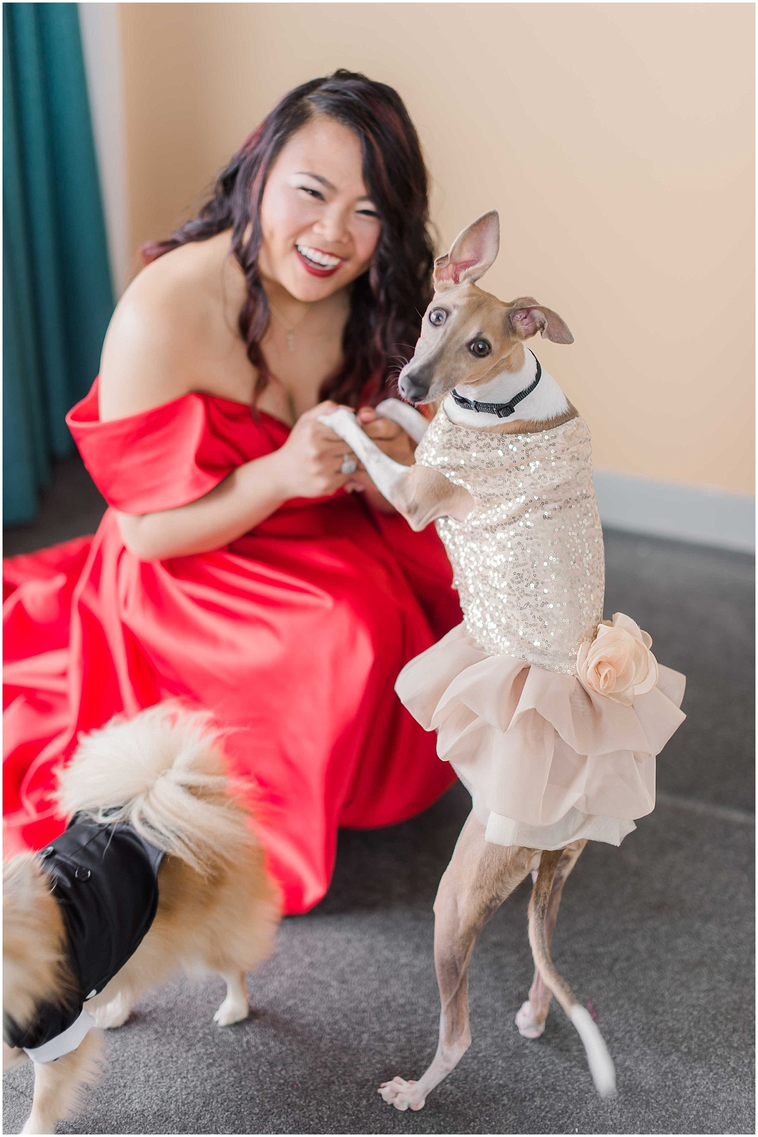 bride getting ready, with her dogs wearing a red wedding dress in an bride and bridesmaids getting ready at an intimate wedding in hoboken new jersey at the W Hotel