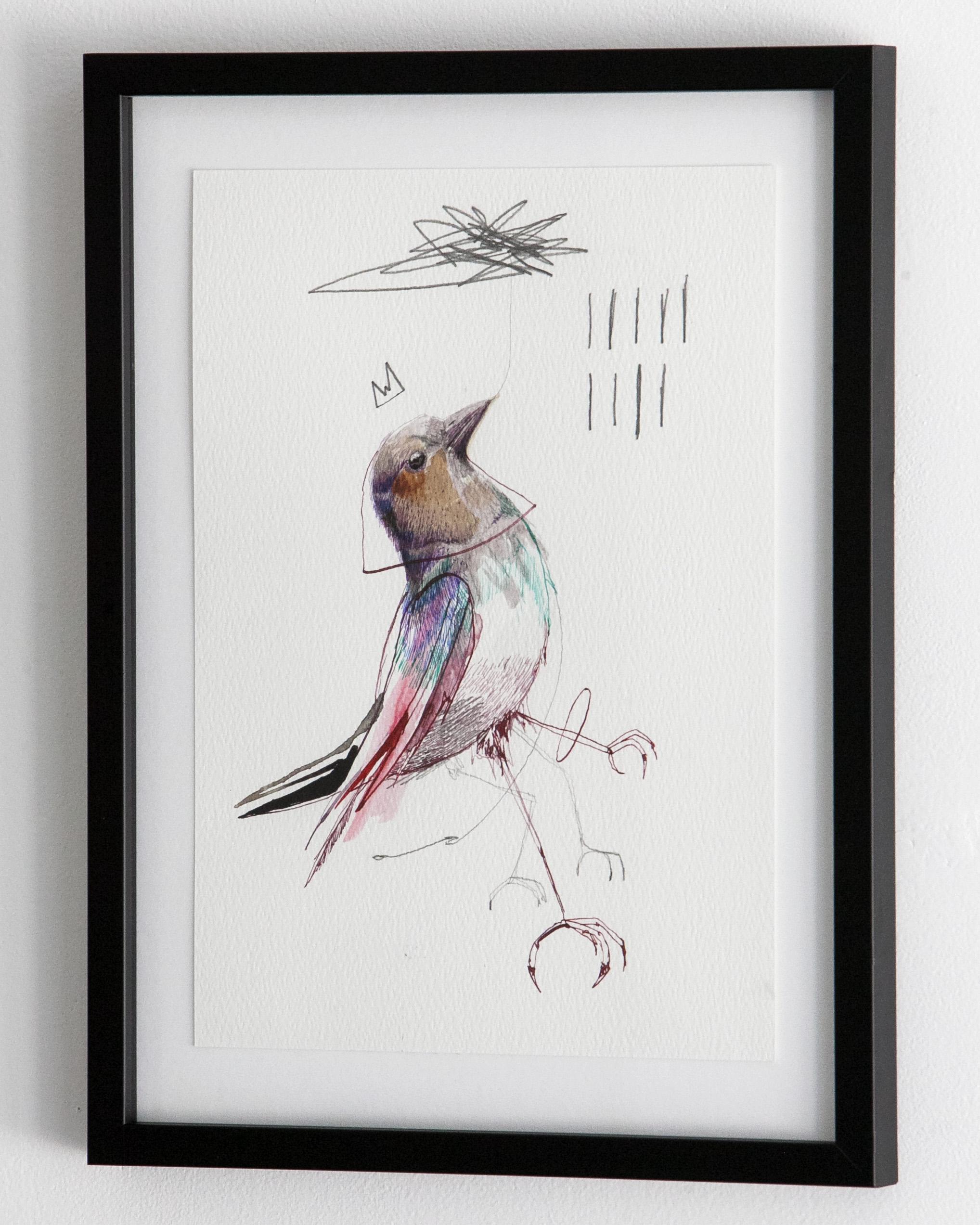 c_bird_13_2.jpg