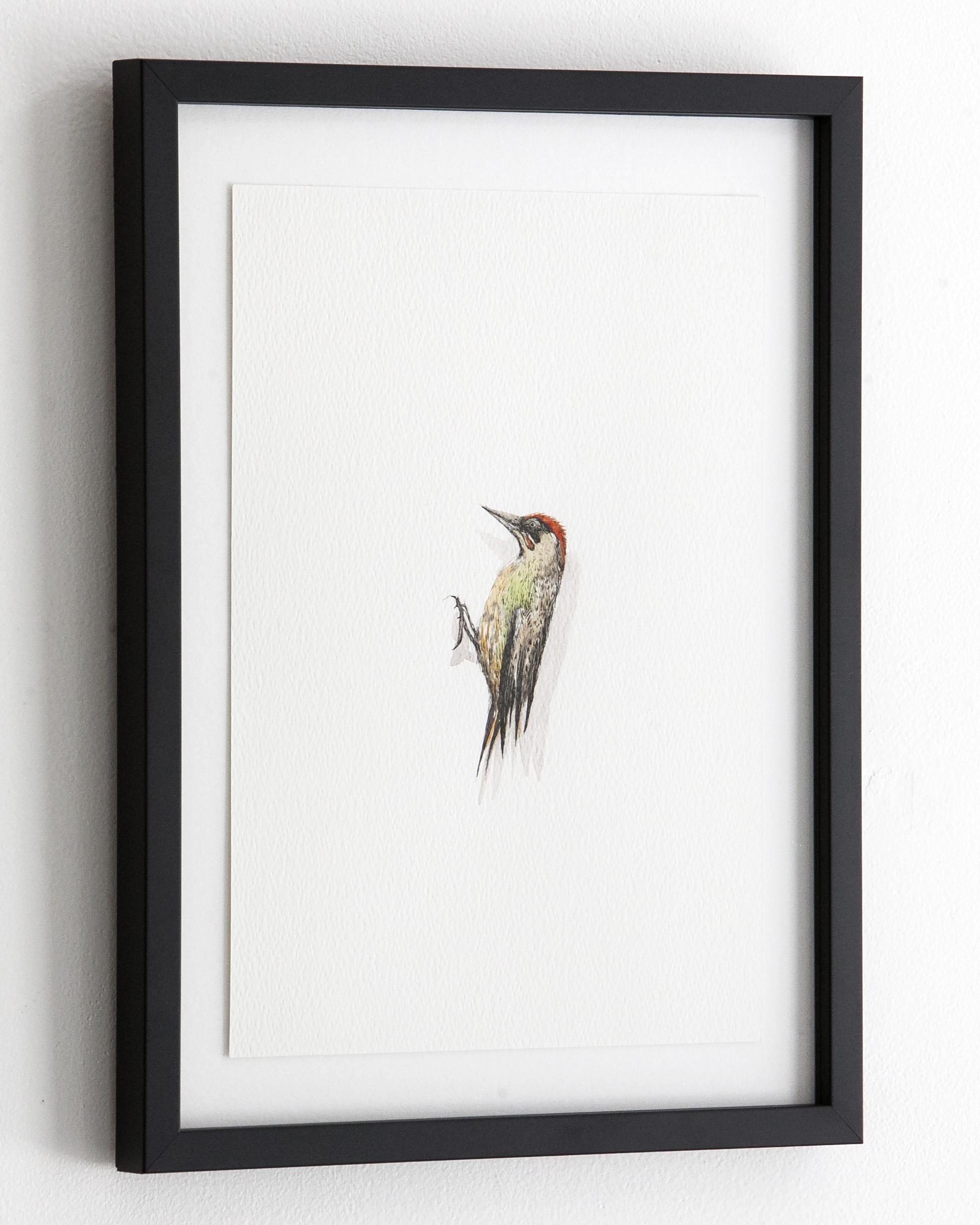 c_bird_7_3.jpg