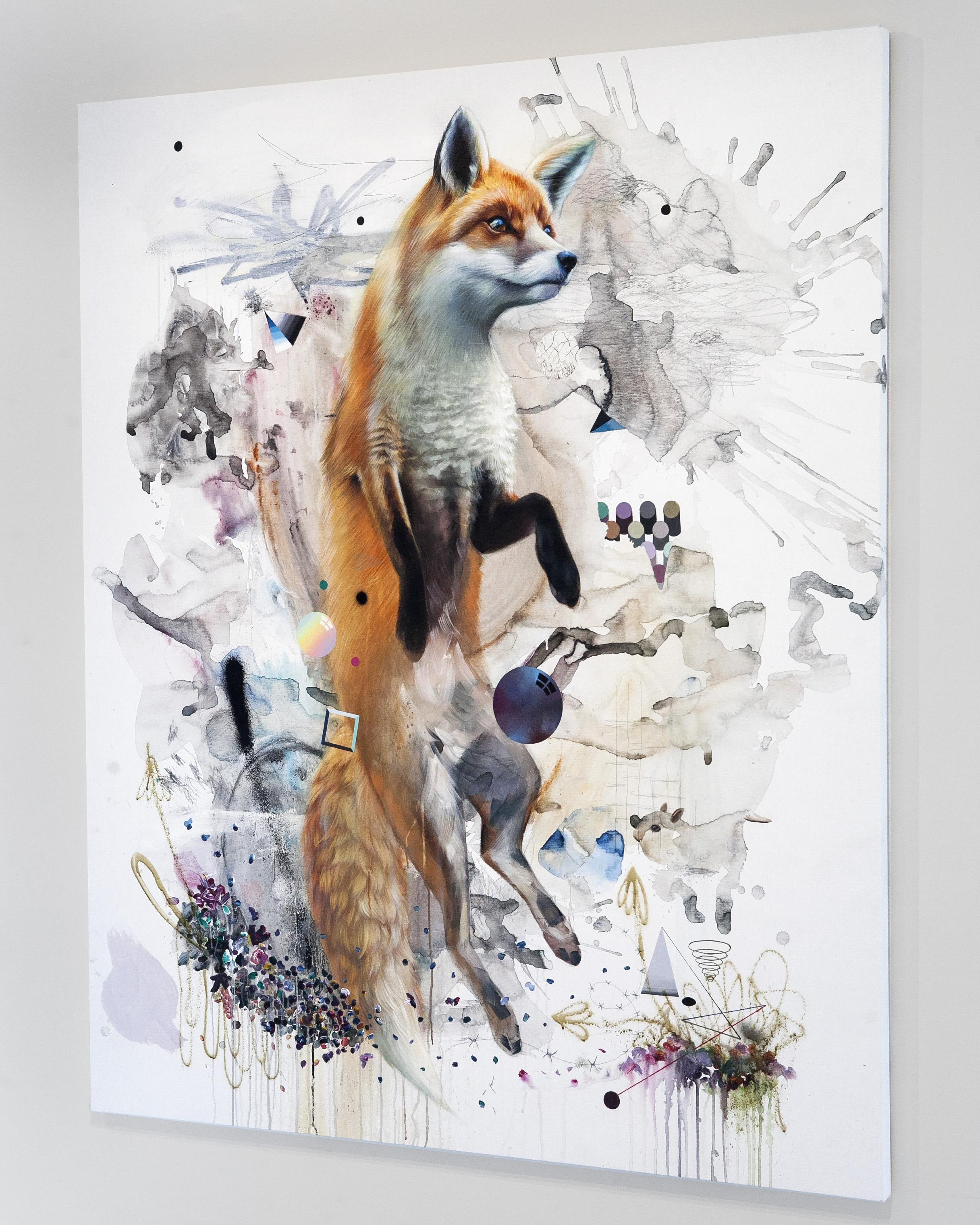 c_sa_fox6.jpg