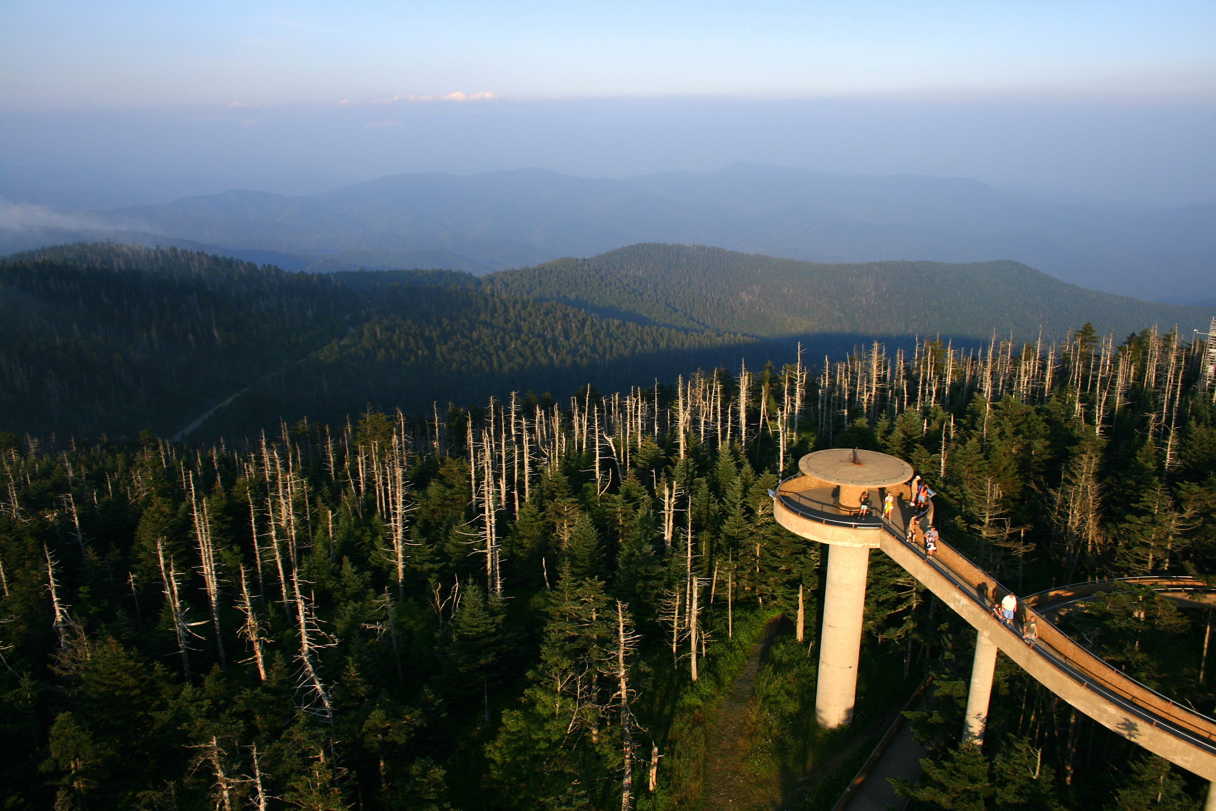 Clingmans Dome - At 6,643 ft, Clingmans Dome is the highest point in Tennessee and has also experienced a large die-off of Fraser Fir, the result of the Balsam woolly adelgid. We will find out what the next succession forest might look like. Originally called Smoky Dome, the name was changed to honor Thomas Lanier Clingman, US Senator and Confederate General who accurately measured the peak with a barometer.The peak is often shrouded in fog and receives 84 inches of rain each year yet the temperature has never been recorded over 80 degrees. The two naturalists guiding this hike will take us out to Andrews Bald, an incredible mountain-top meadow,and along the Spruce-Fir Nature Trail.