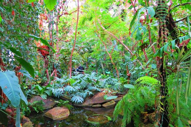 13-Garden-bohemian.jpg