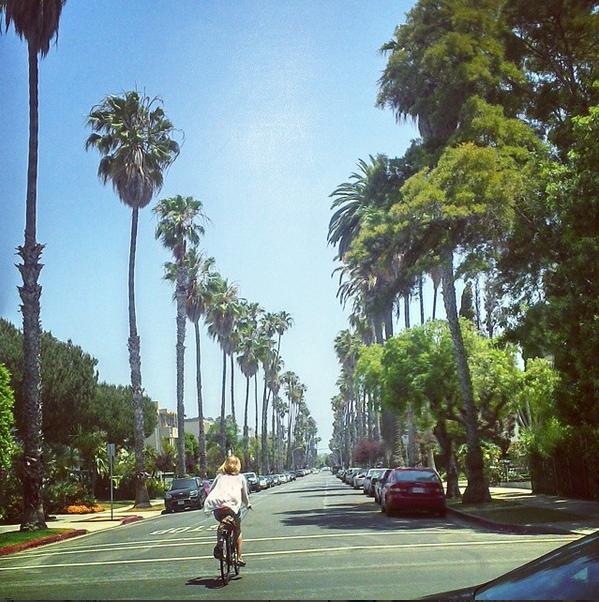 Palm trees on Montana and 5th, Santa Monica