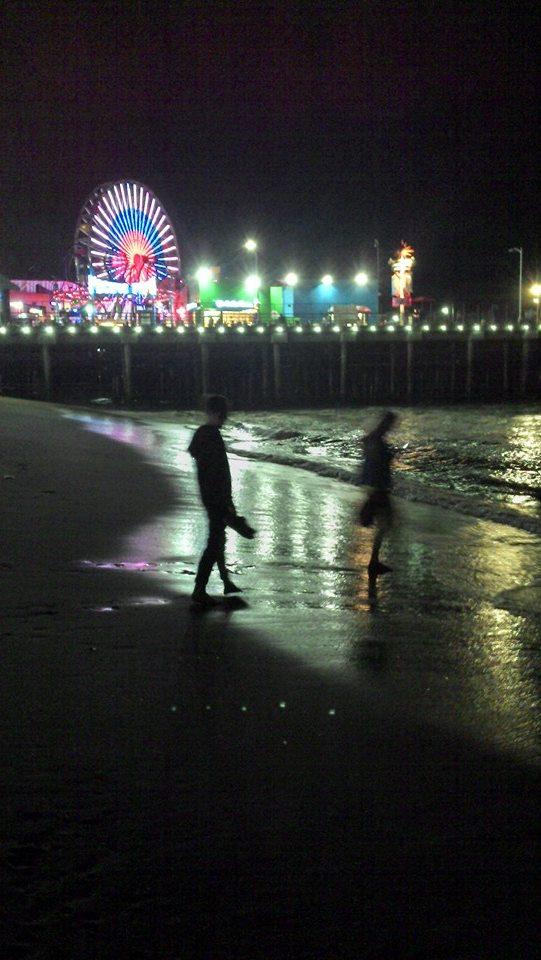 Santa Monica pier from the beach, by night