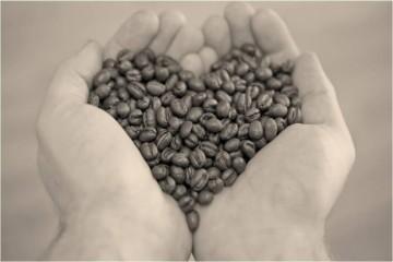 smallcoffeehands.jpg