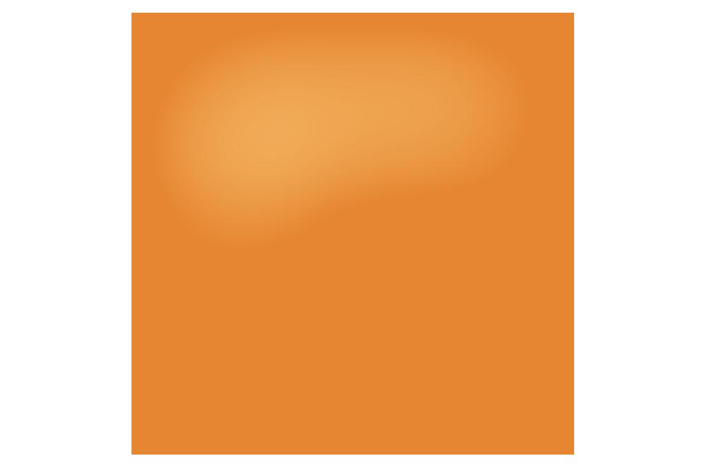 SP WSF Website.png