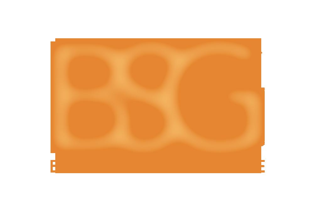 SP BSG Website.png