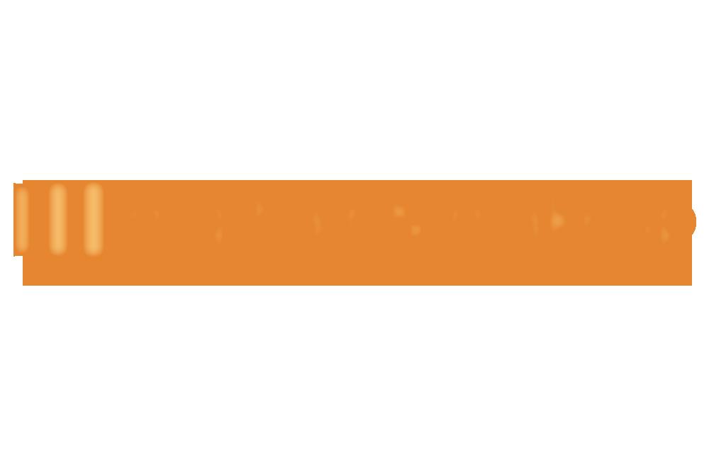 SP MG 1 Website.png