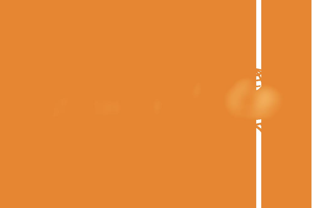 SP UNICEF Website.png