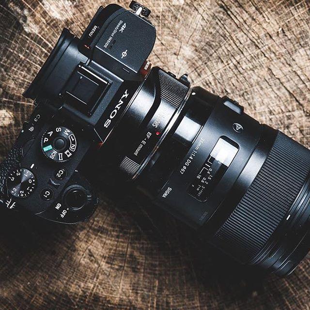d13d0fc93cee72df5c8500cbc9c477b9--sony-a-photography-gear.jpg