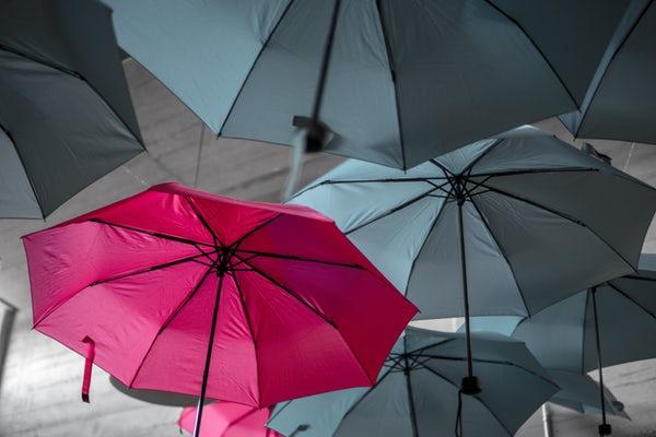 Unique Umbrella.jpg