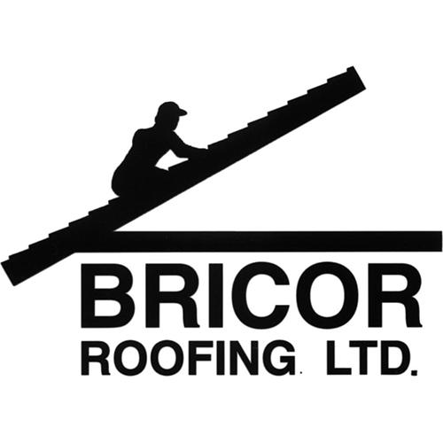 Bricor-logo_opt.jpg