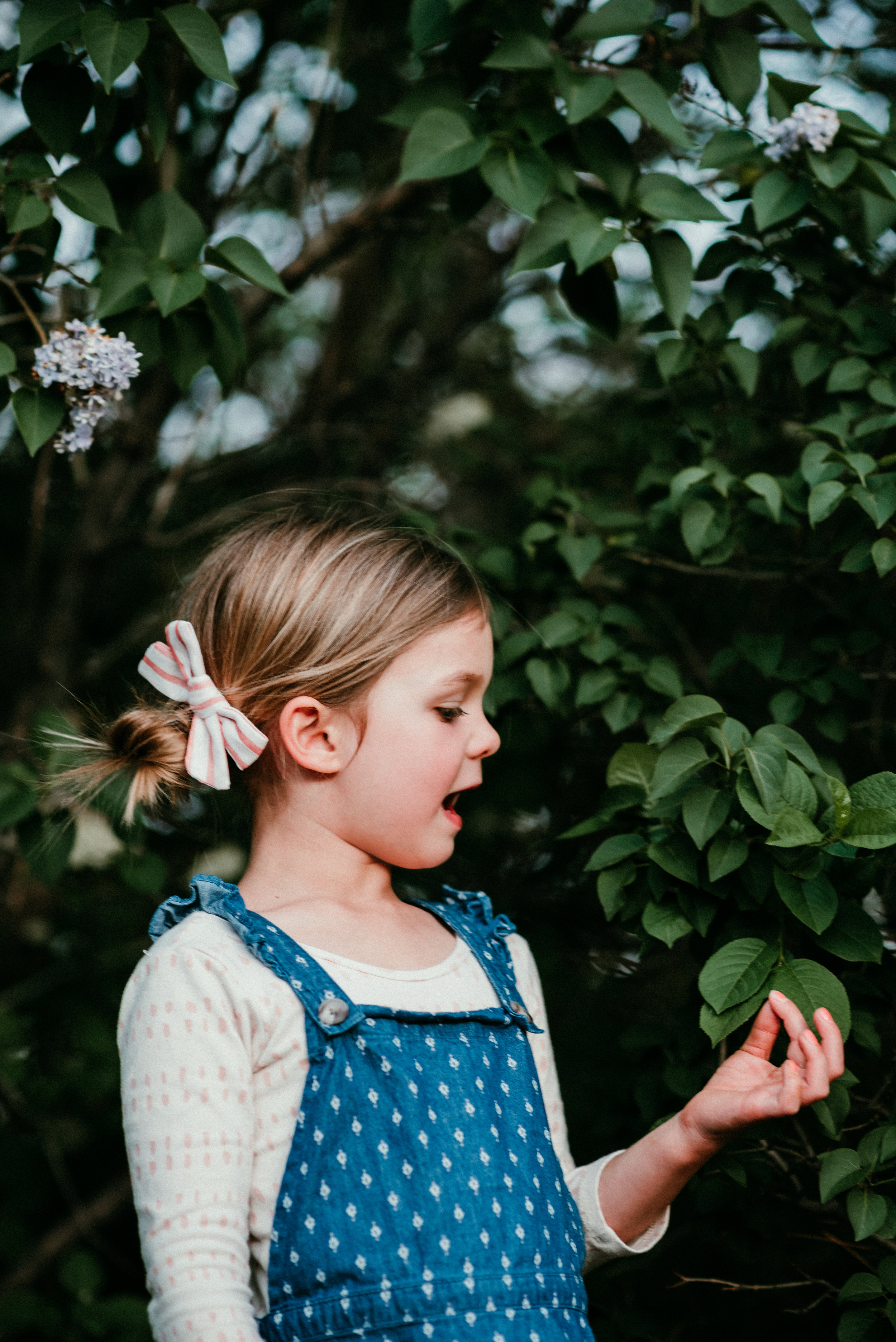 Storied Photography - CGO-10.jpg
