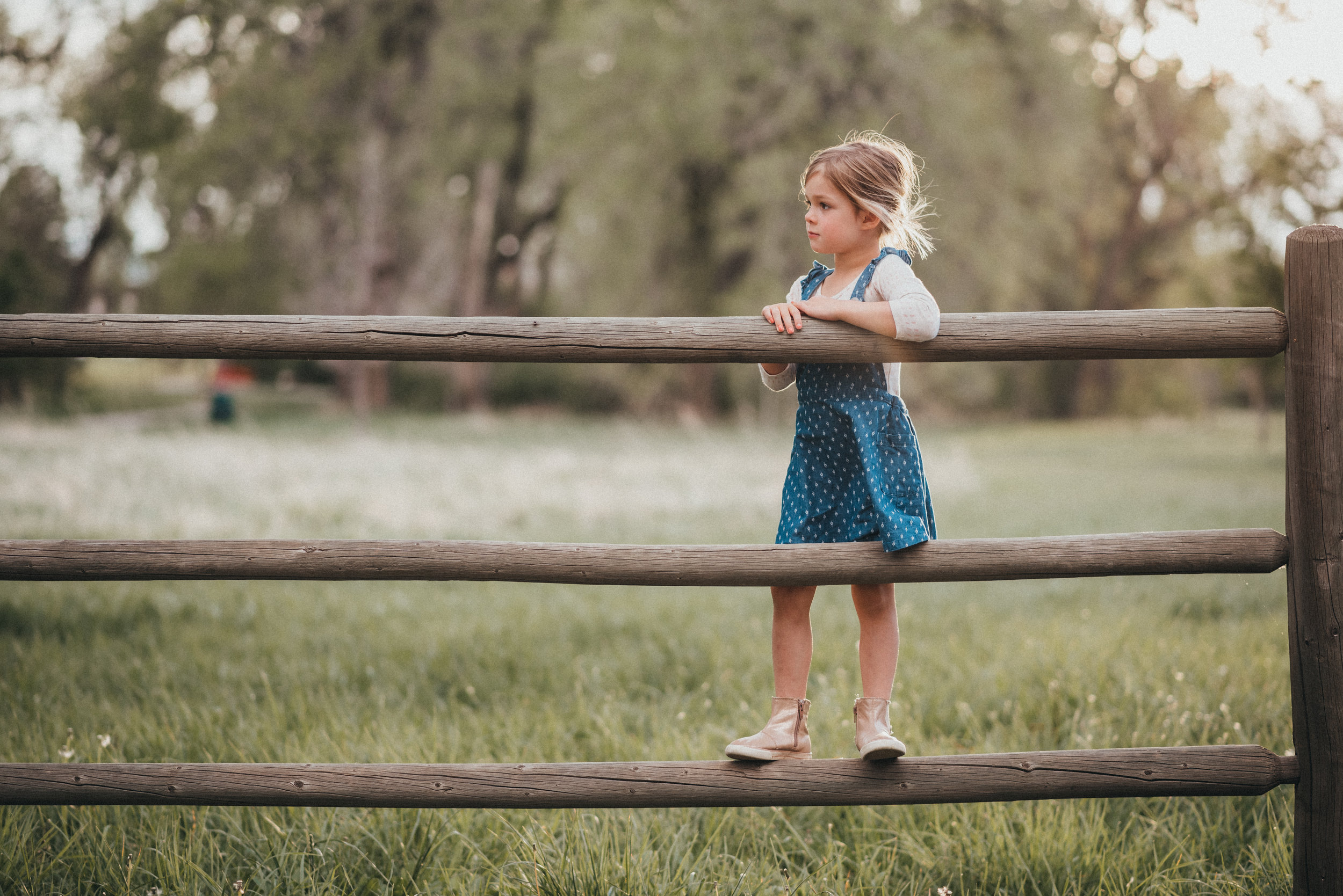 Storied Photography - CGO-25.jpg