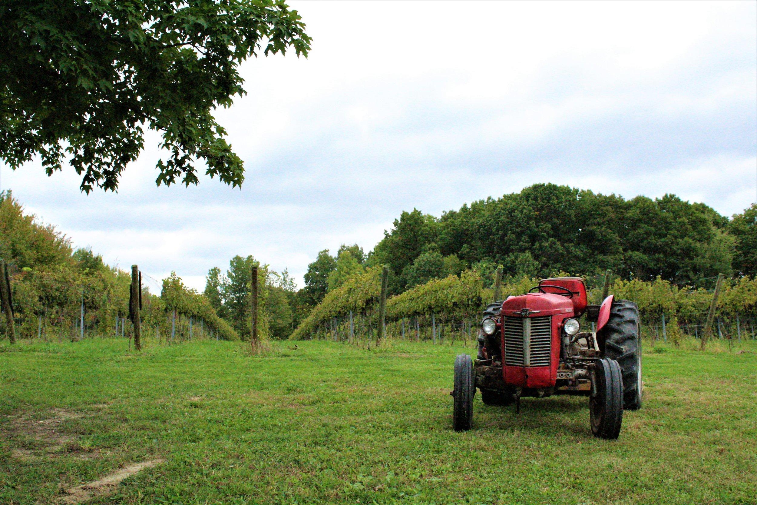 Silver Crest Tractor2.jpg