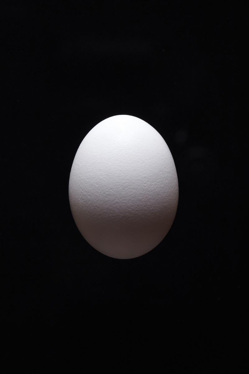 1501-01_Egg_4825.jpg