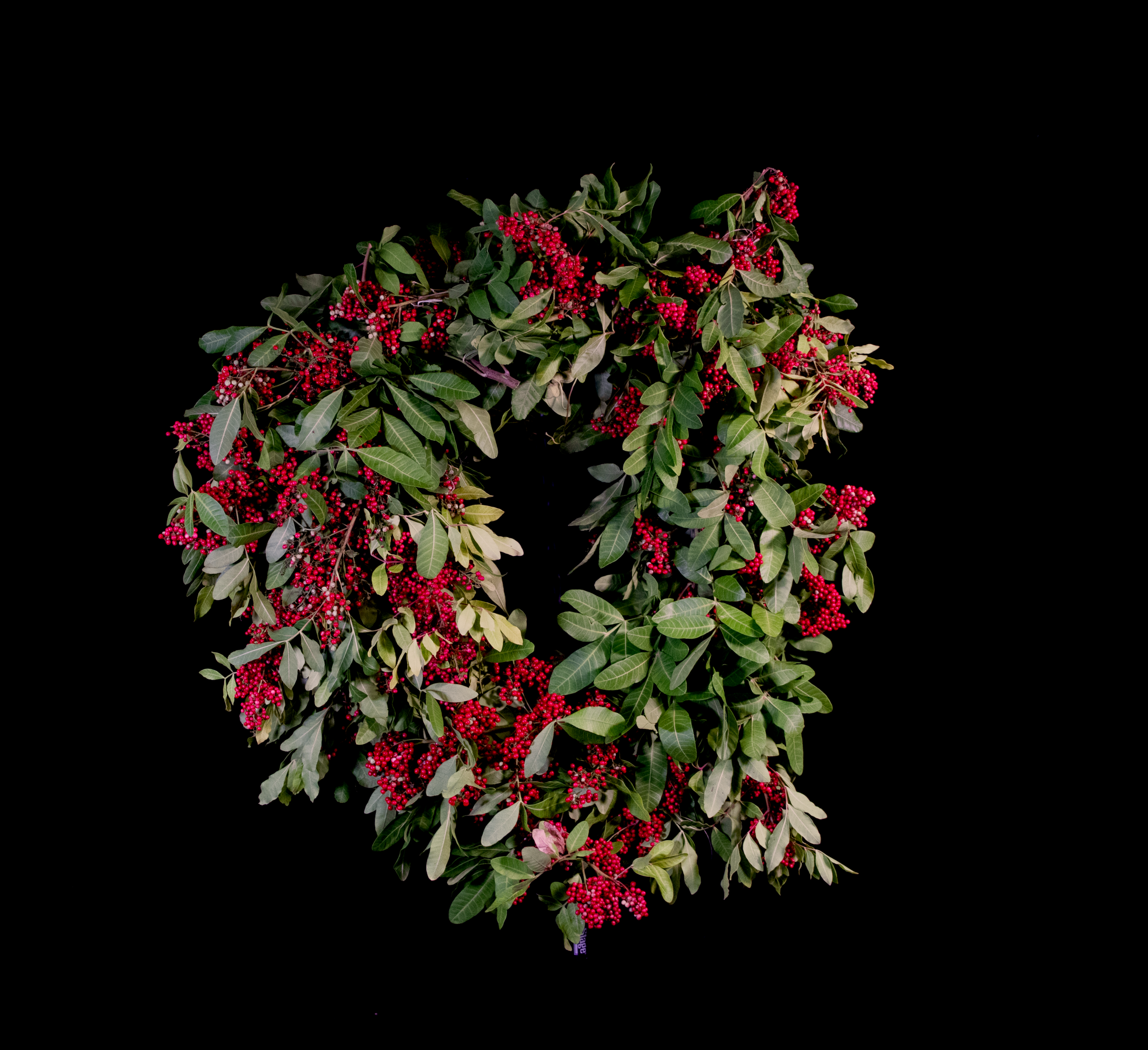 Wreath_photo_studio.png