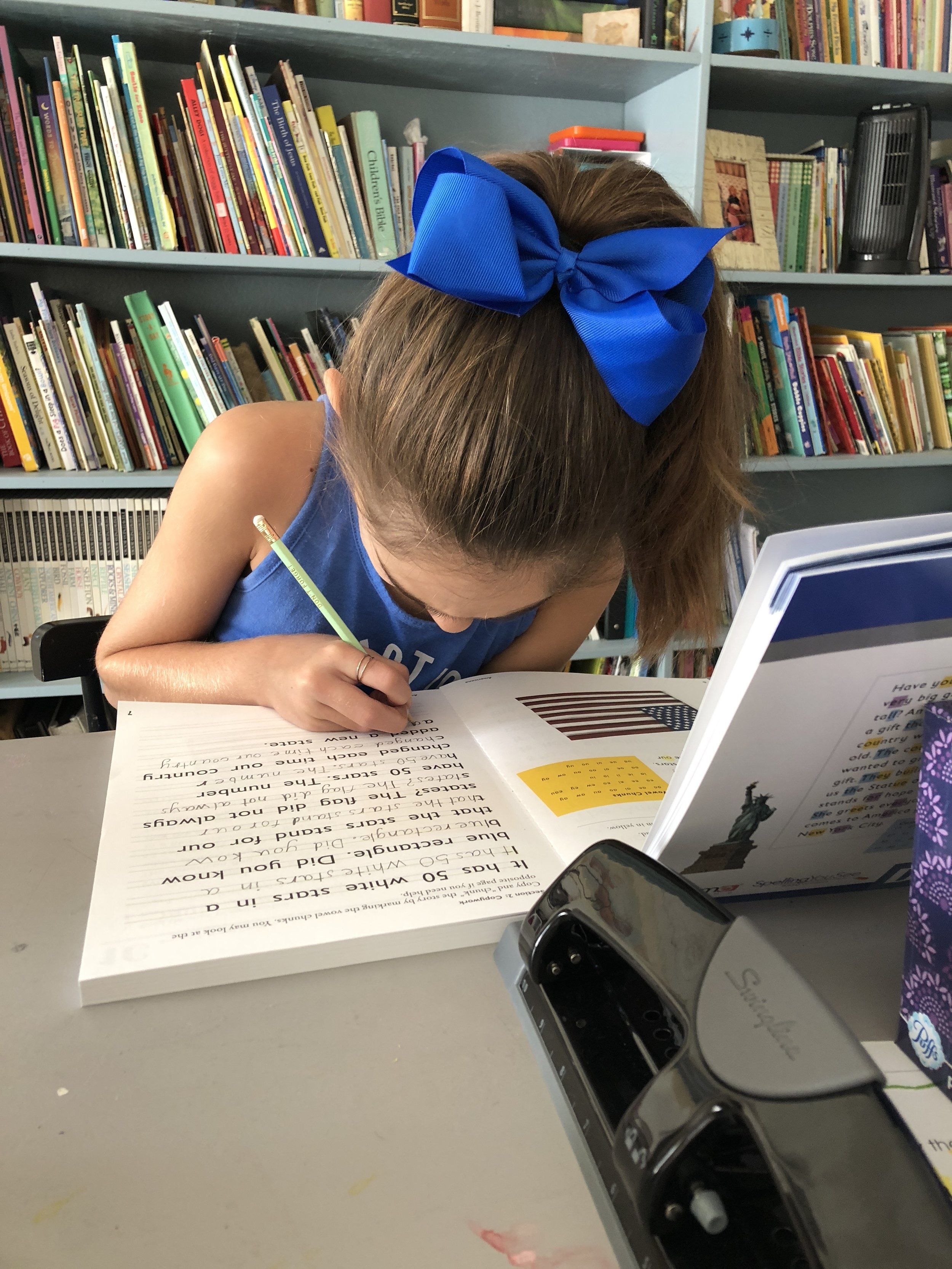 Homeschool Scheduling and Goal Setting - Getting ahead before falling behind.