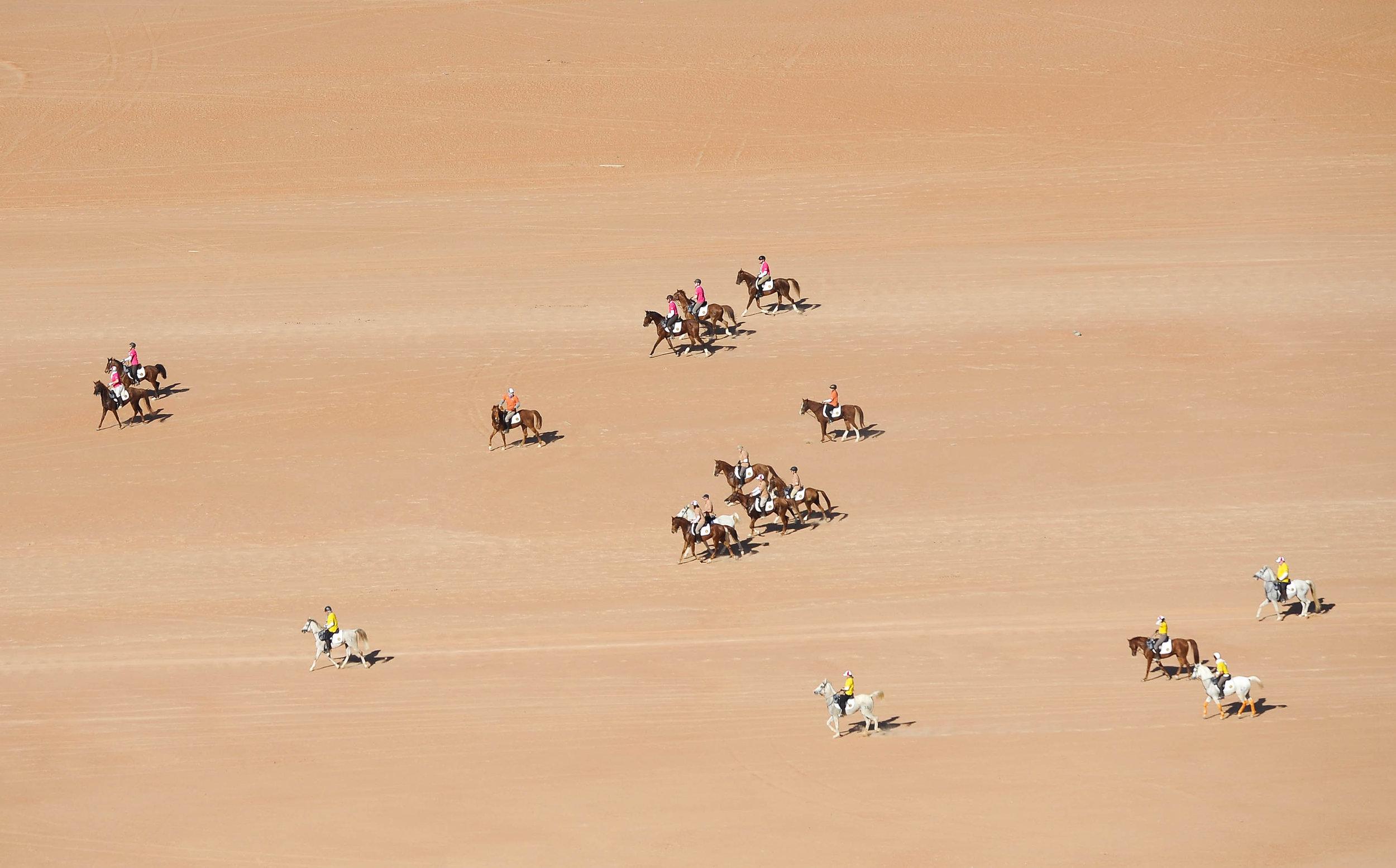 Race GoO - 15.jpg