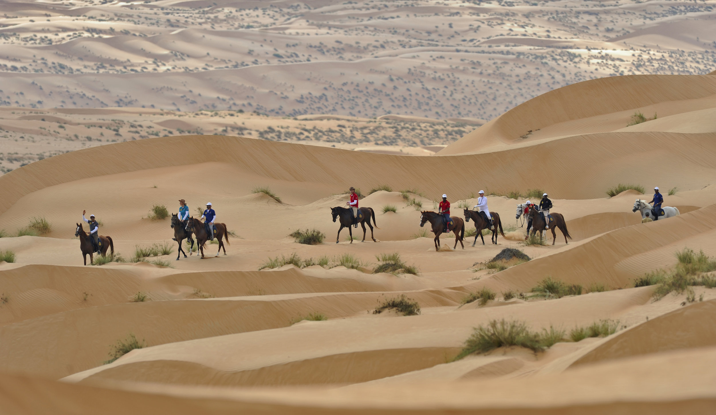 Gallops of Oman 2014