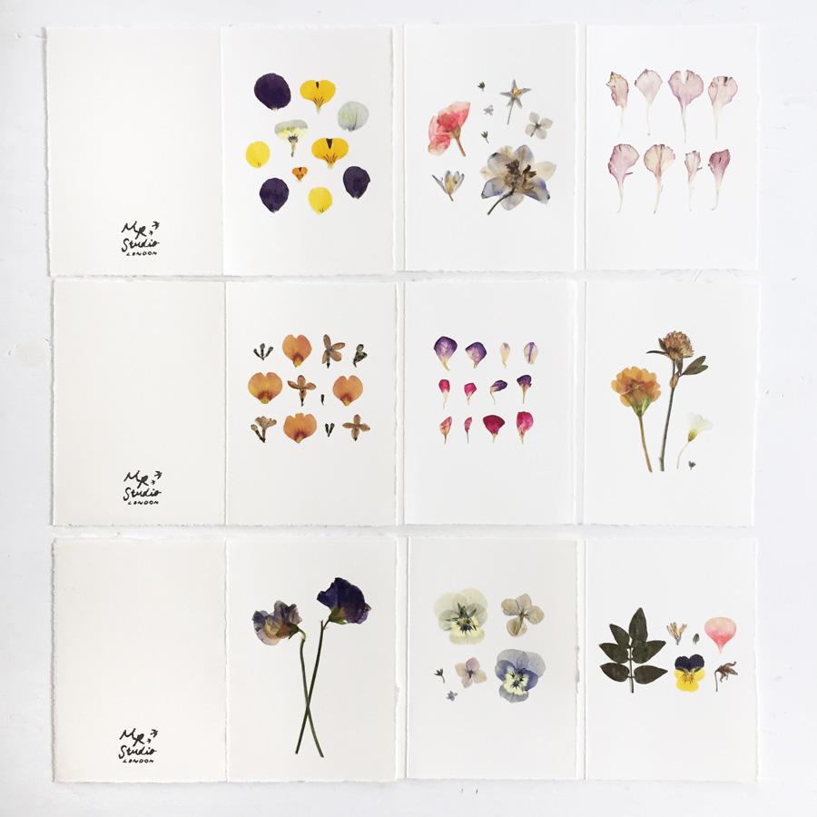 pressed-flower-cards-9-900.jpg