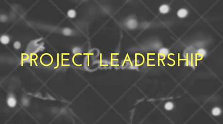 Project Leadership: Who will be your guide?