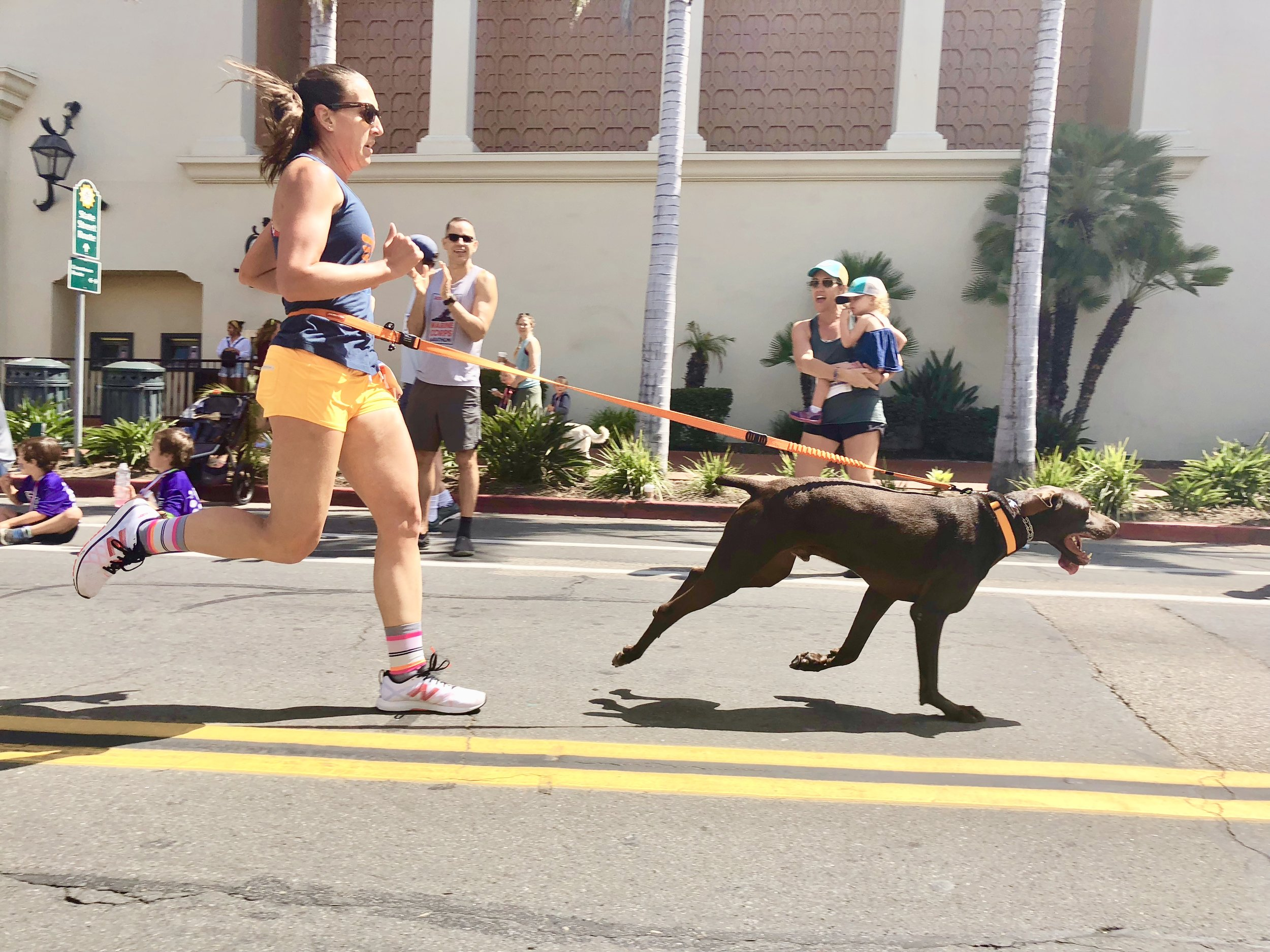 Kristiana & Griz cruising to the finish line at the State Street Mile's world famous Dog Mile.