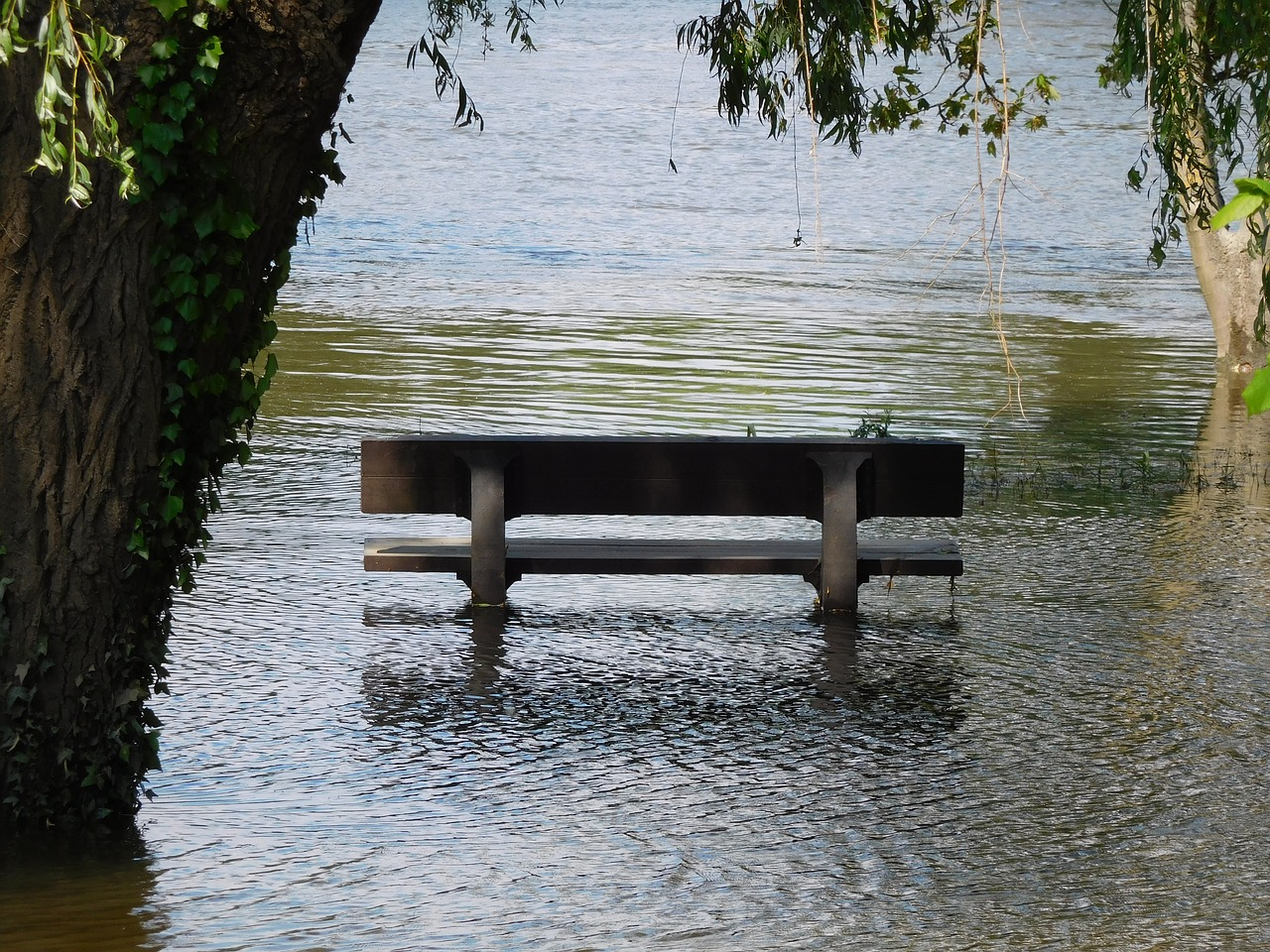 bench-2908778_1280.jpg