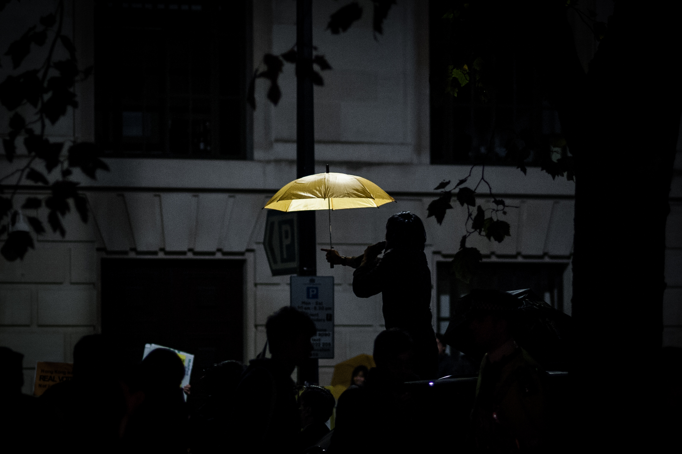 Umbrella Movement 2014 - Suki Mok-4.jpg