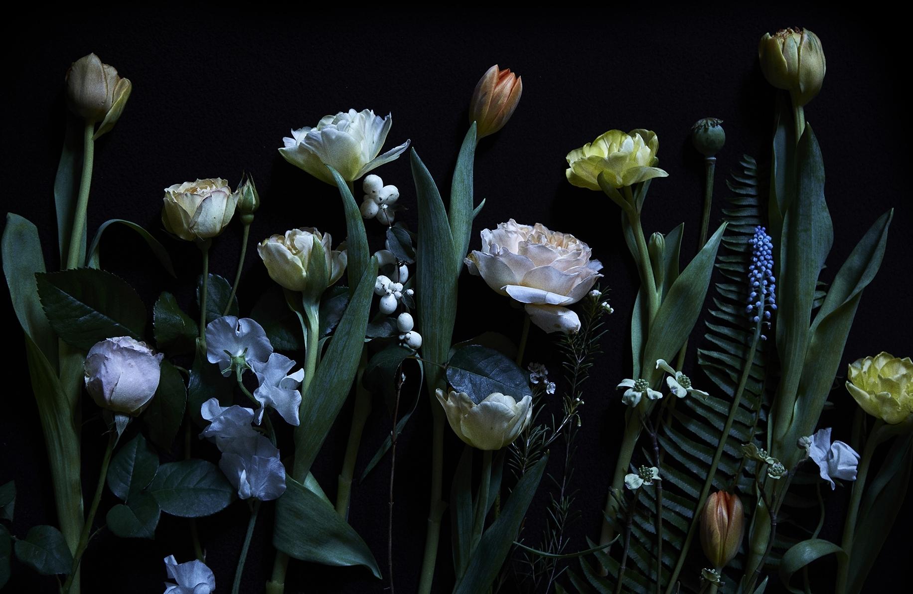 flowers_day26908.jpg