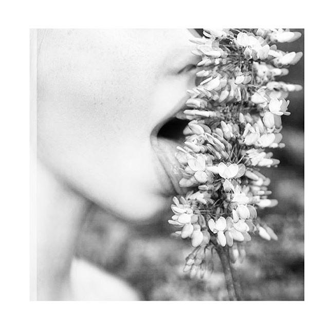 { i dare ya } lick a flower  hug a tree  make waves #earthdayeveryday