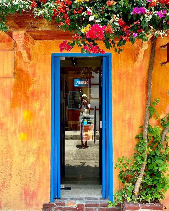 I was immediately struck by the decorative doors of Cartagena. There's a story behind the colors, along with the plants and vines twisting up quaint balconies - even the door knockers! I couldn't get enough.