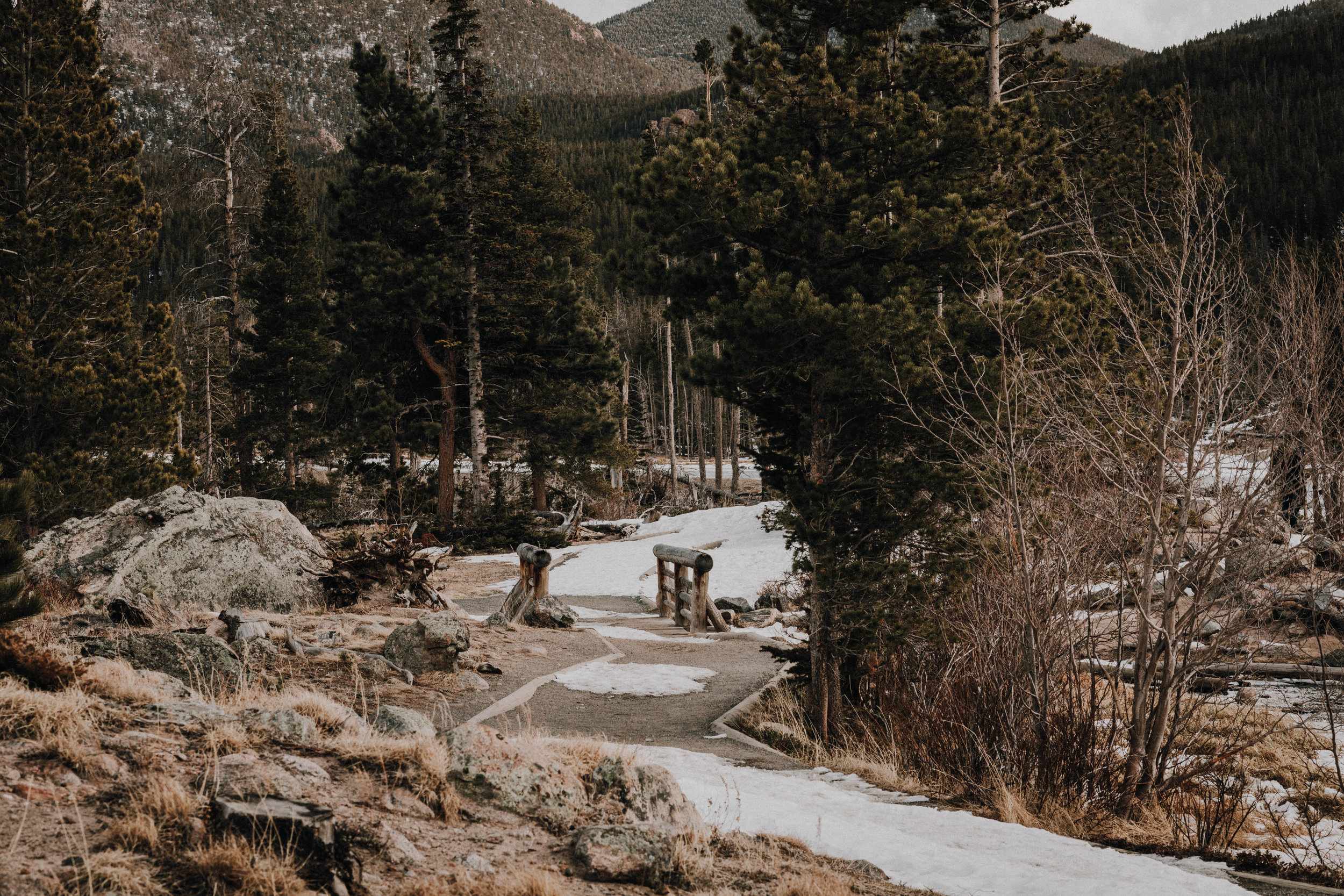 Sheena_Shahangian_Photography_Lifestyle_and_Travel_Photo_Shoot_Rocky_Mountain_National_Park-13.jpg
