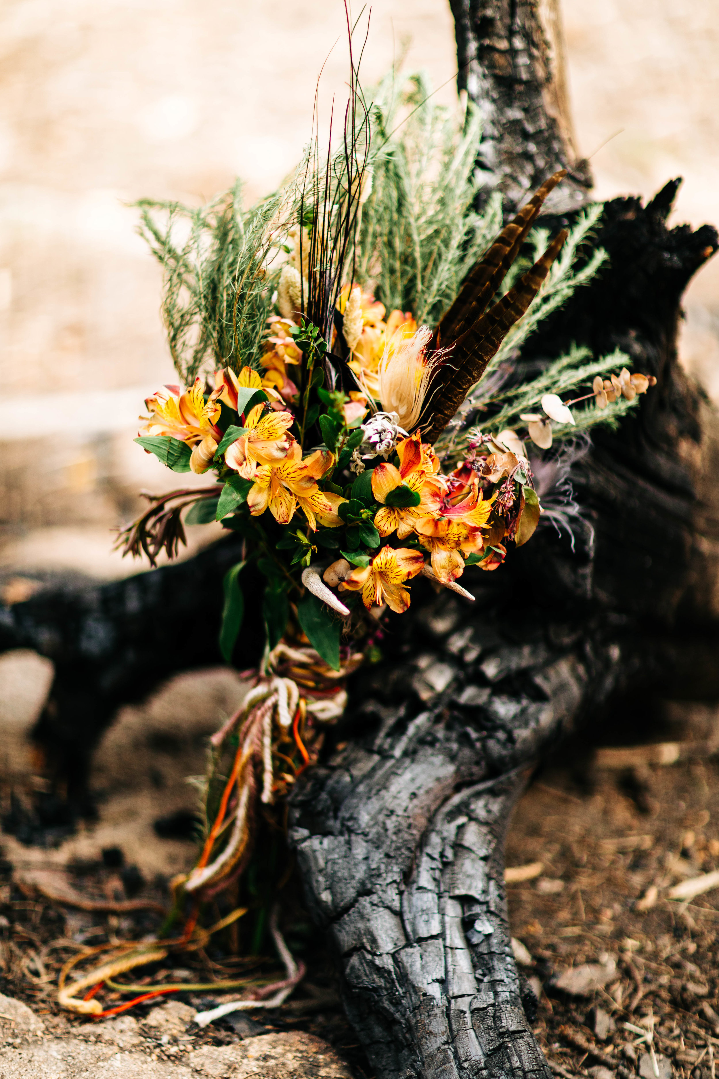 foraged elopement bouquet for a Colorado adventure elopement | Colorado elopement photographers