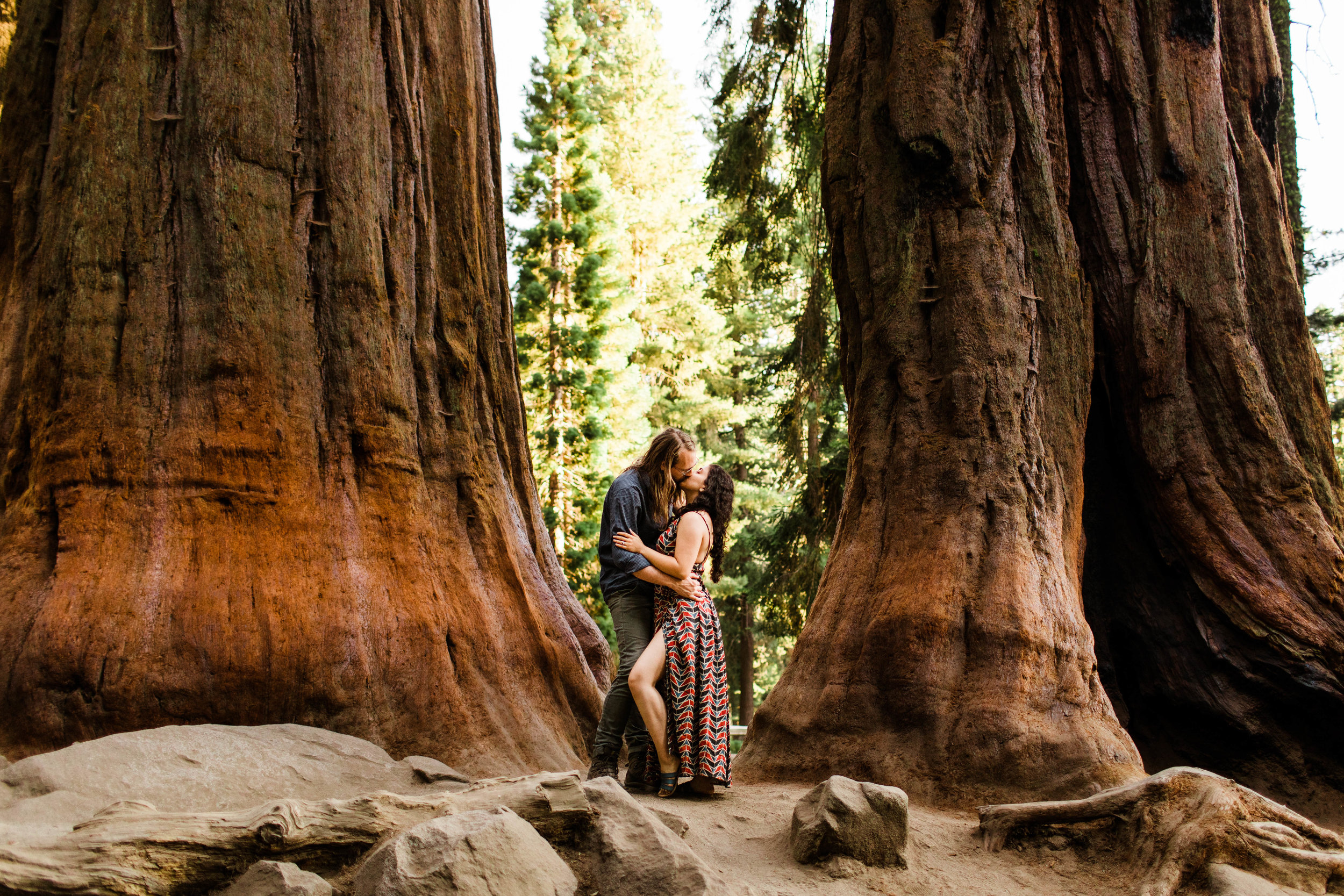 Copy of Woodsy elopement in an ancient mountain forest | elopement photographers of Colorado